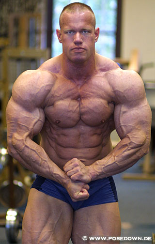 dutchbodybuilding winstrol